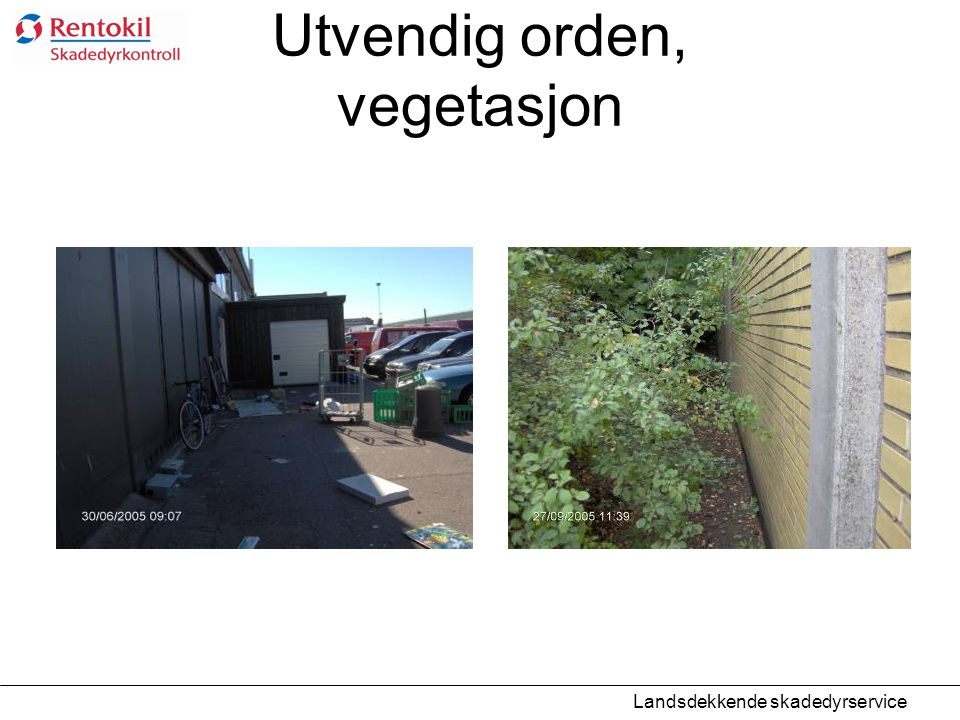 Utvendig orden, vegetasjon