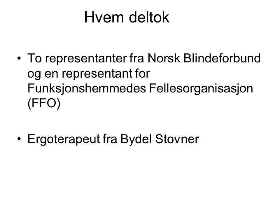 Hvem deltok To representanter fra Norsk Blindeforbund og en representant for Funksjonshemmedes Fellesorganisasjon (FFO)