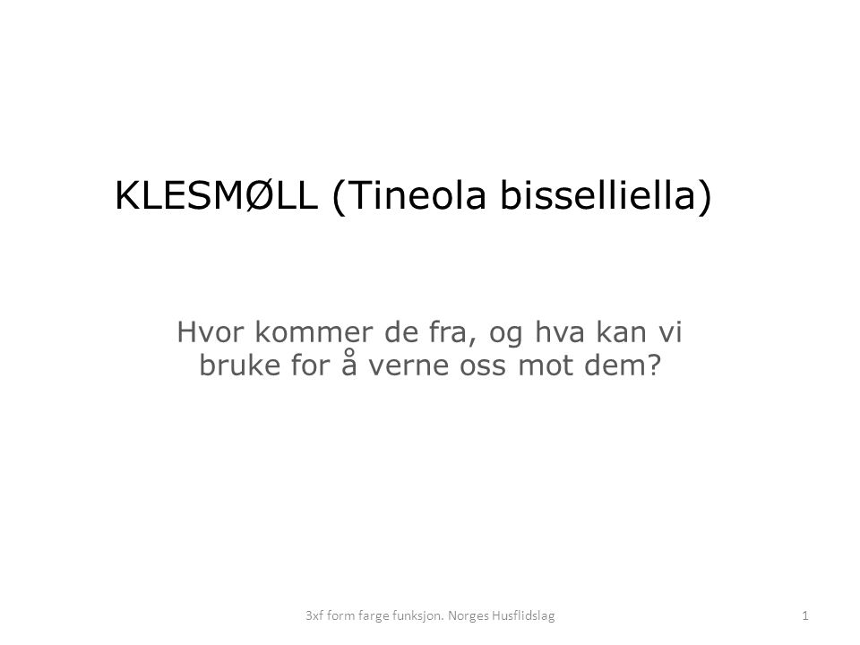 KLESMØLL (Tineola bisselliella)