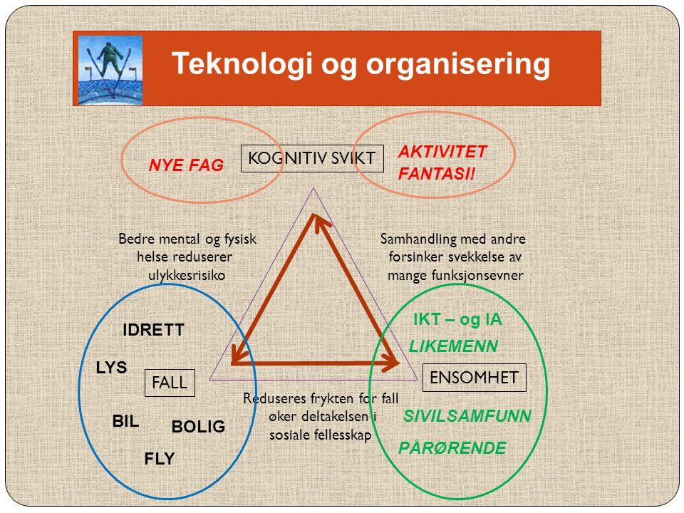 Teknologi og organisering