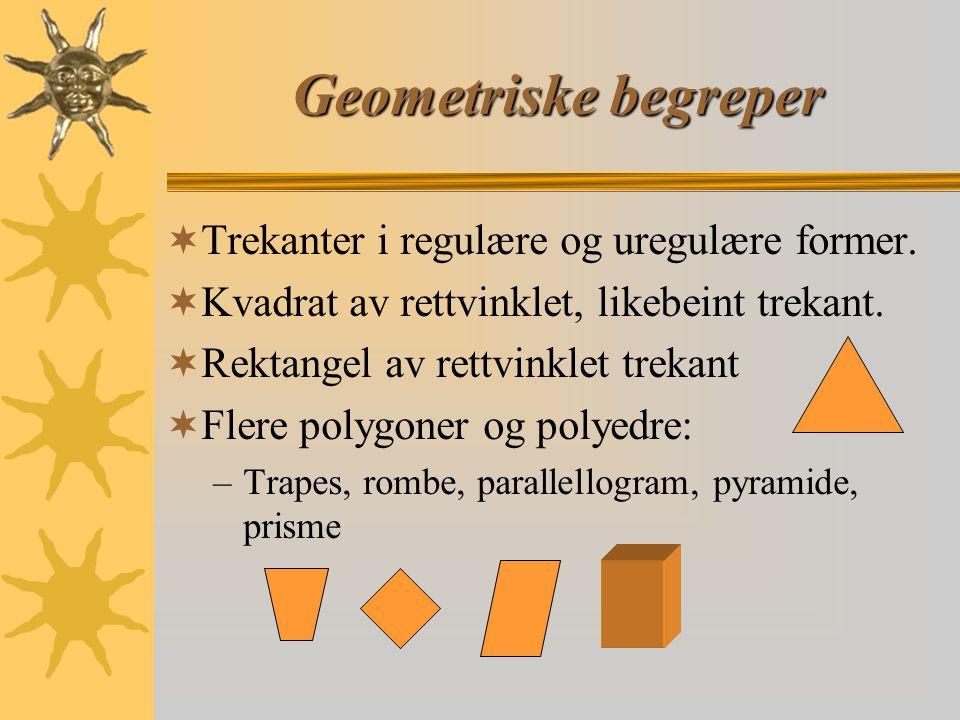 Geometriske begreper Trekanter i regulære og uregulære former.