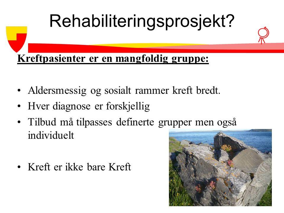 Rehabiliteringsprosjekt