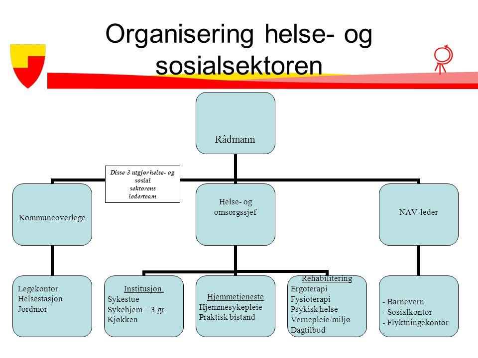 Organisering helse- og sosialsektoren