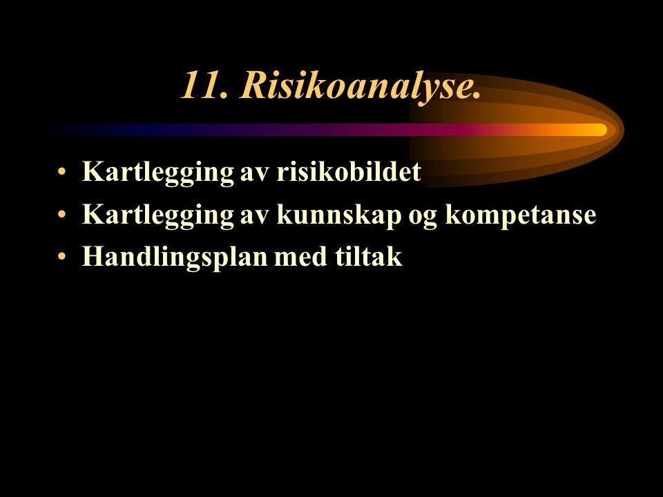 11. Risikoanalyse. Kartlegging av risikobildet