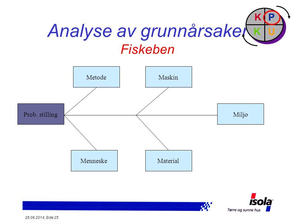 Analyse av grunnårsaker Fiskeben