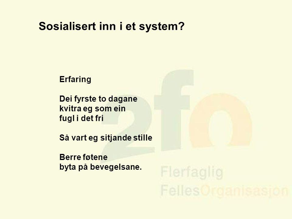 Sosialisert inn i et system