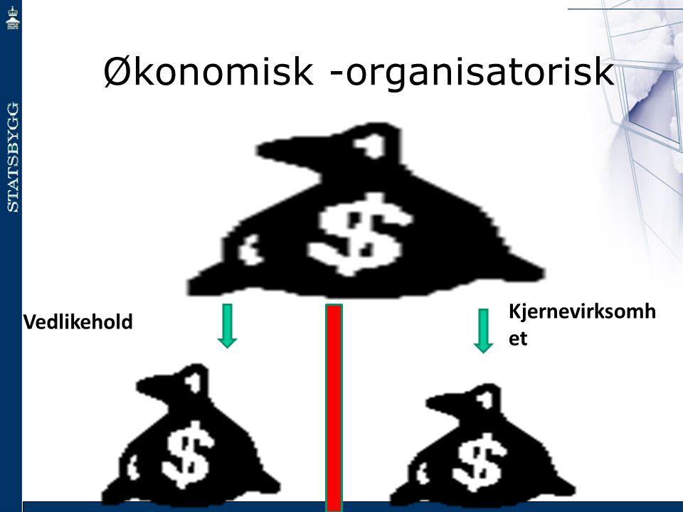 Økonomisk -organisatorisk