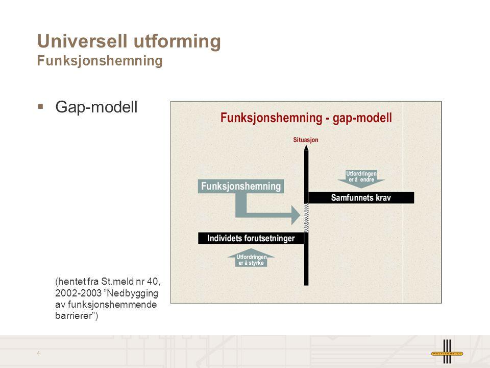 Universell utforming Funksjonshemning