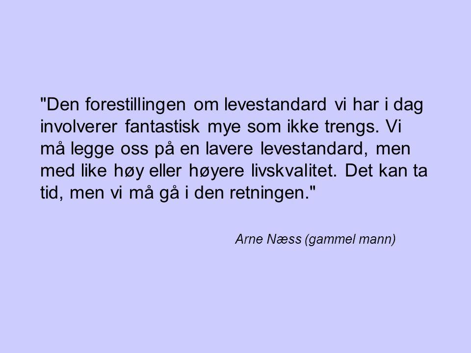 Arne Næss (gammel mann)