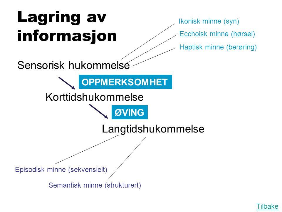 Lagring av informasjon