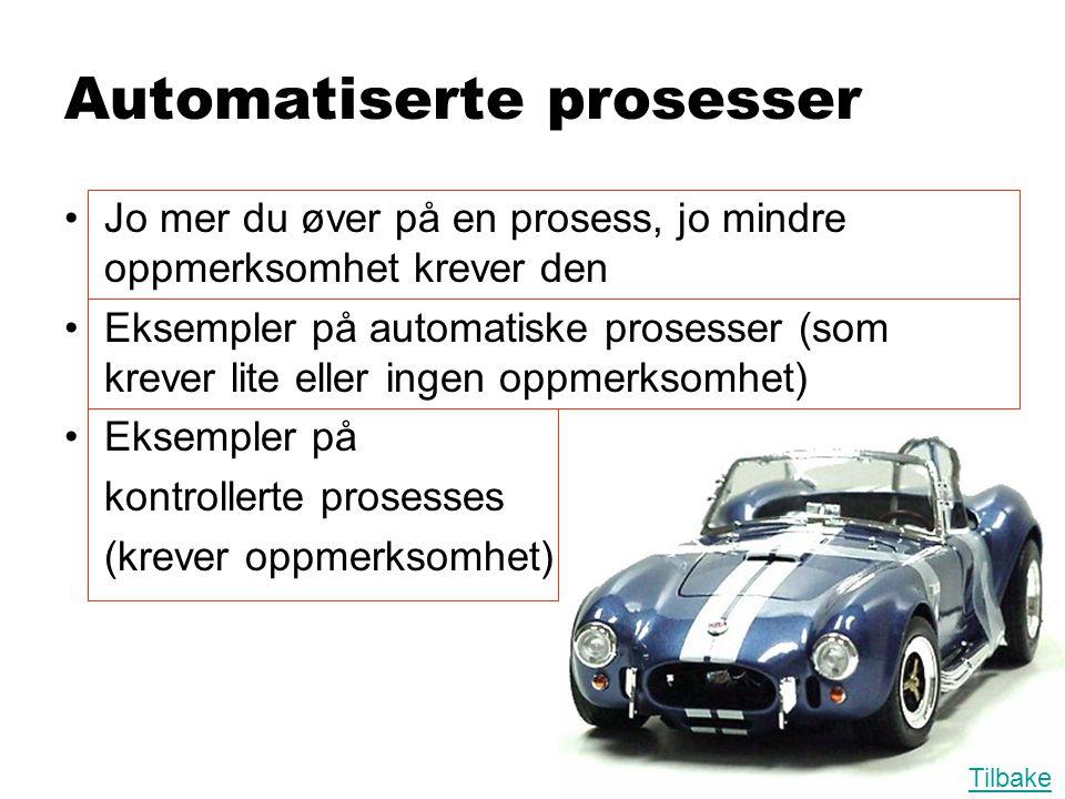 Automatiserte prosesser