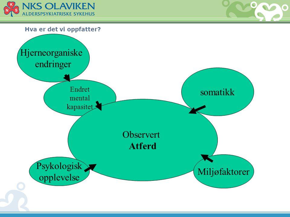 Hjerneorganiske endringer somatikk Observert Atferd Psykologisk