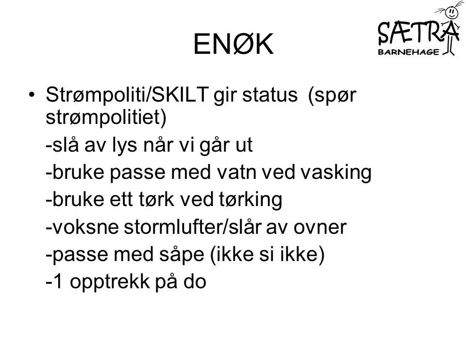 ENØK Strømpoliti/SKILT gir status (spør strømpolitiet)