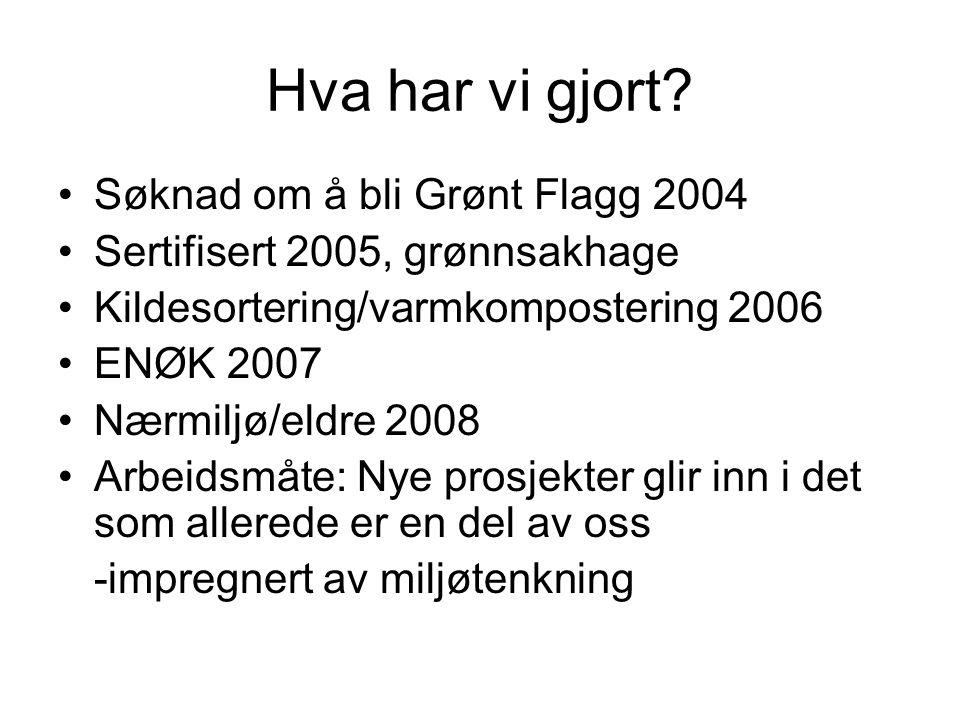 Hva har vi gjort Søknad om å bli Grønt Flagg 2004