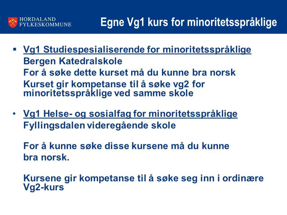 Egne Vg1 kurs for minoritetsspråklige