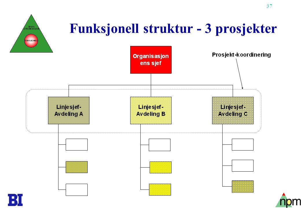 Funksjonell struktur - 3 prosjekter