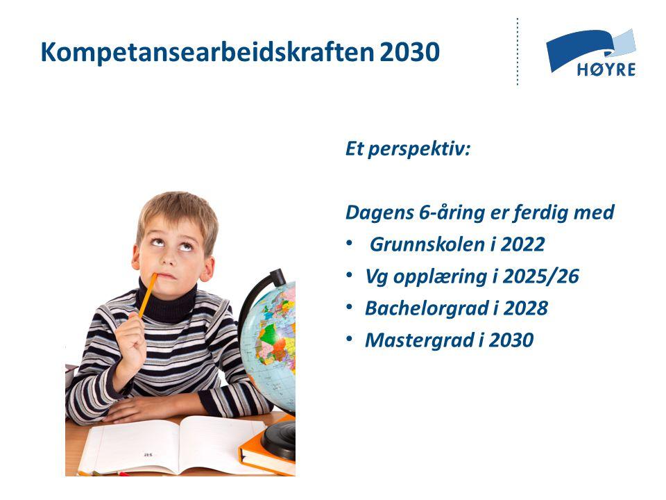 Kompetansearbeidskraften 2030