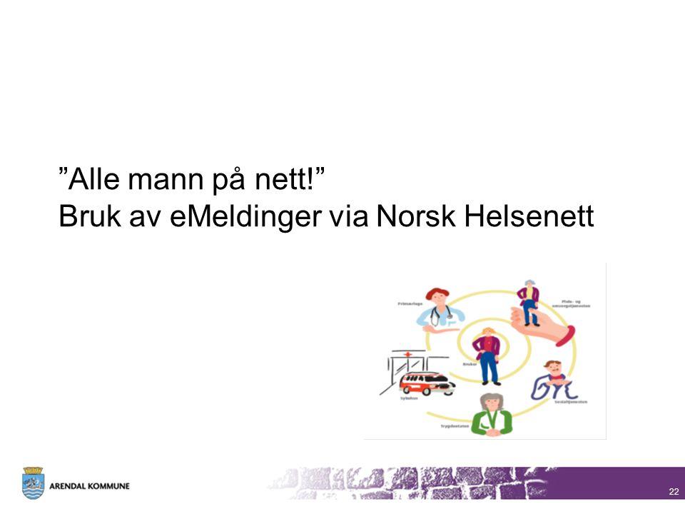 Alle mann på nett! Bruk av eMeldinger via Norsk Helsenett