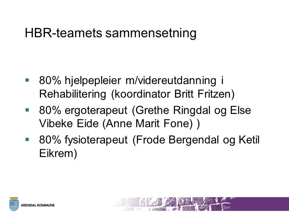 HBR-teamets sammensetning