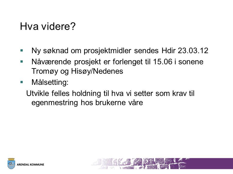 Hva videre Ny søknad om prosjektmidler sendes Hdir 23.03.12