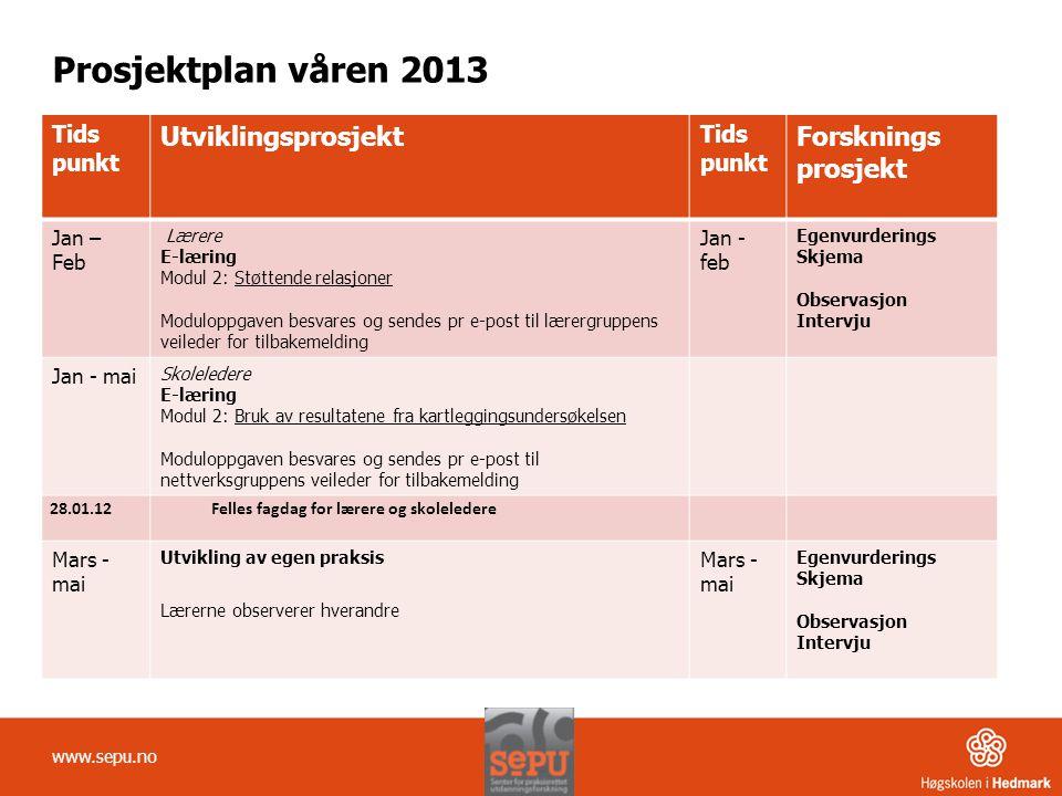 Prosjektplan våren 2013 Utviklingsprosjekt Forsknings prosjekt Tids