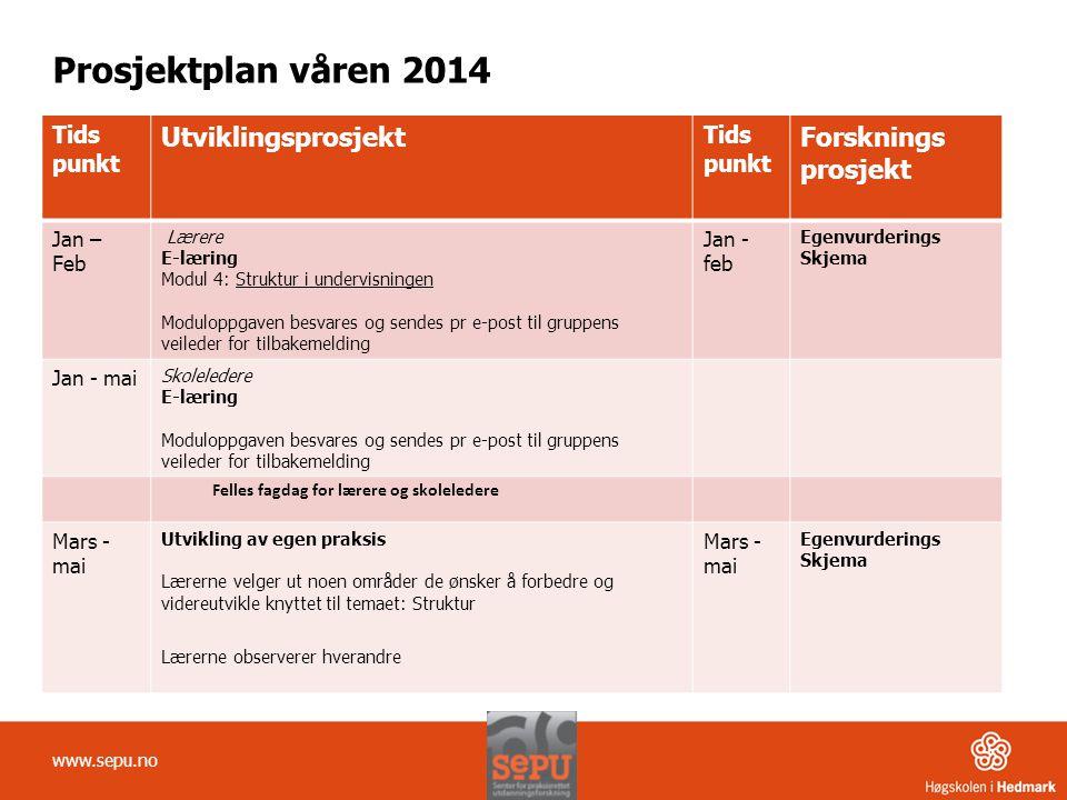 Prosjektplan våren 2014 Utviklingsprosjekt Forsknings prosjekt Tids