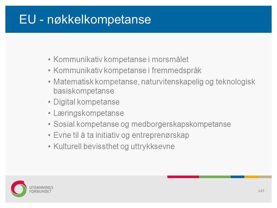 EU - nøkkelkompetanse Kommunikativ kompetanse i morsmålet
