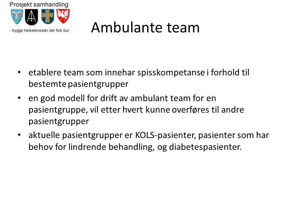Ambulante team etablere team som innehar spisskompetanse i forhold til bestemte pasientgrupper.