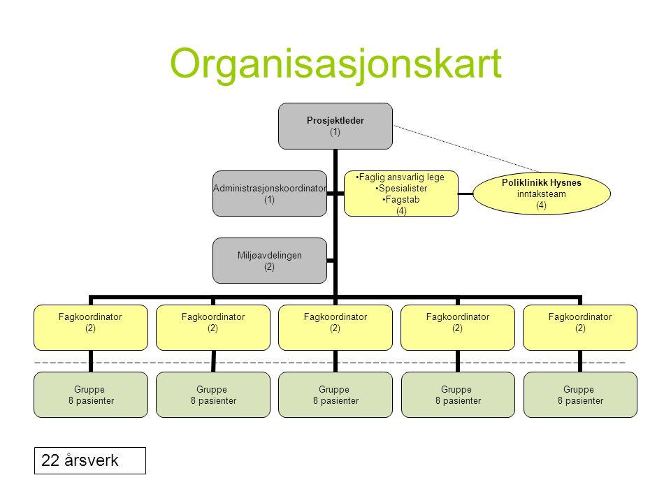 Organisasjonskart 22 årsverk