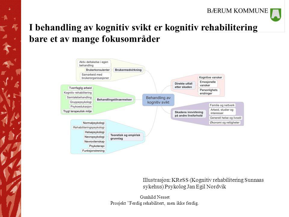I behandling av kognitiv svikt er kognitiv rehabilitering bare et av mange fokusområder