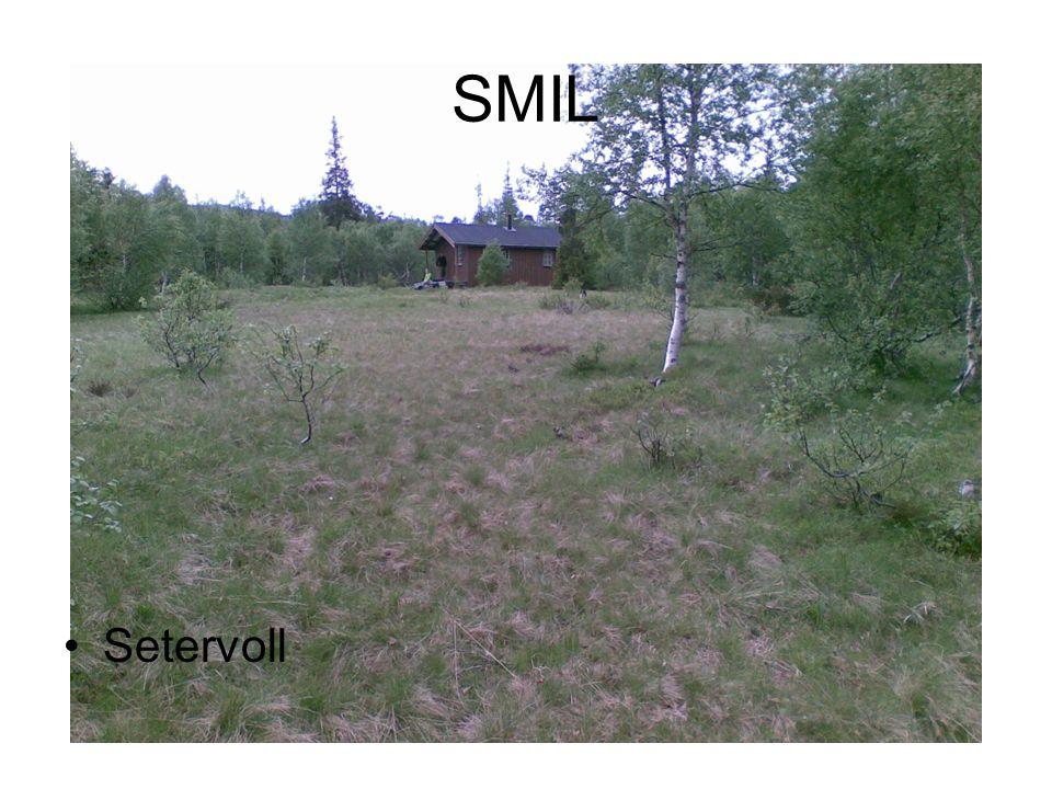 SMIL Setervoll