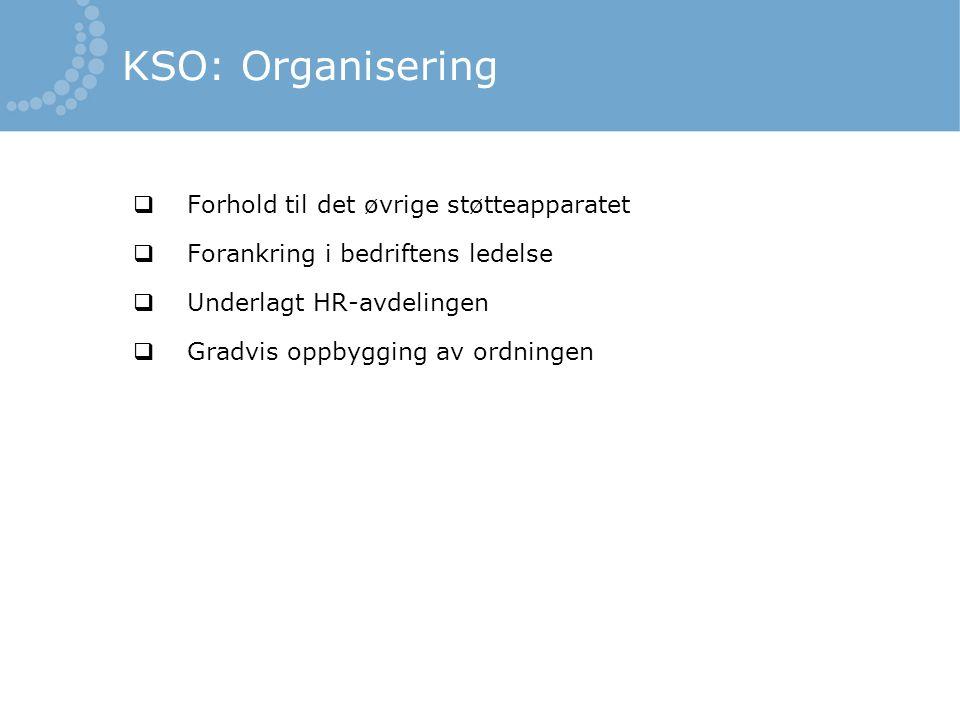 KSO: Organisering Forhold til det øvrige støtteapparatet