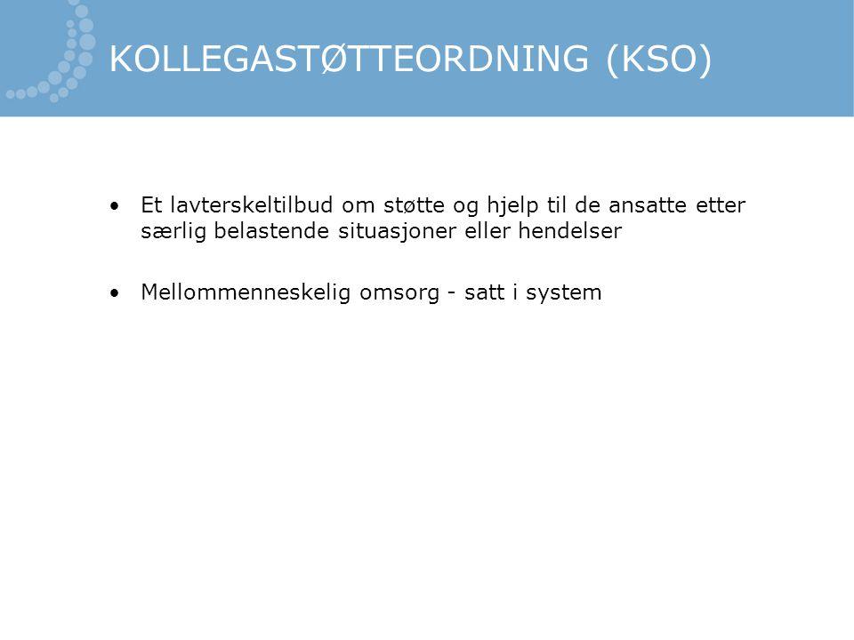 KOLLEGASTØTTEORDNING (KSO)