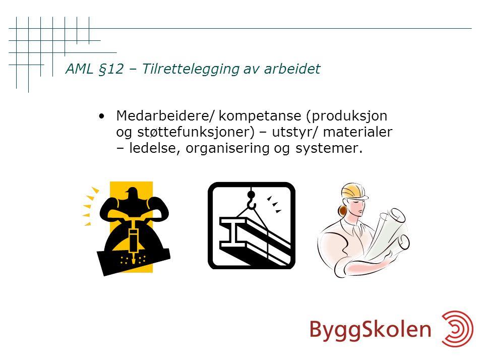 AML §12 – Tilrettelegging av arbeidet