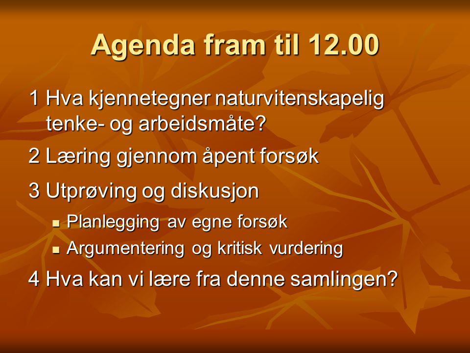 Agenda fram til 12.00 1 Hva kjennetegner naturvitenskapelig tenke- og arbeidsmåte 2 Læring gjennom åpent forsøk.