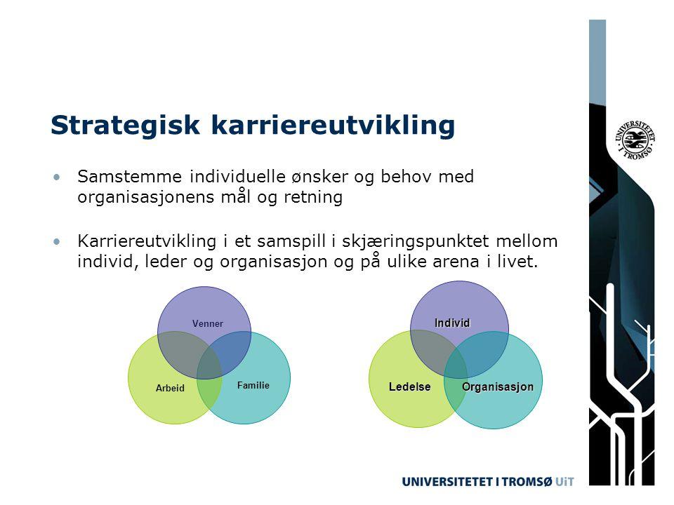 Strategisk karriereutvikling