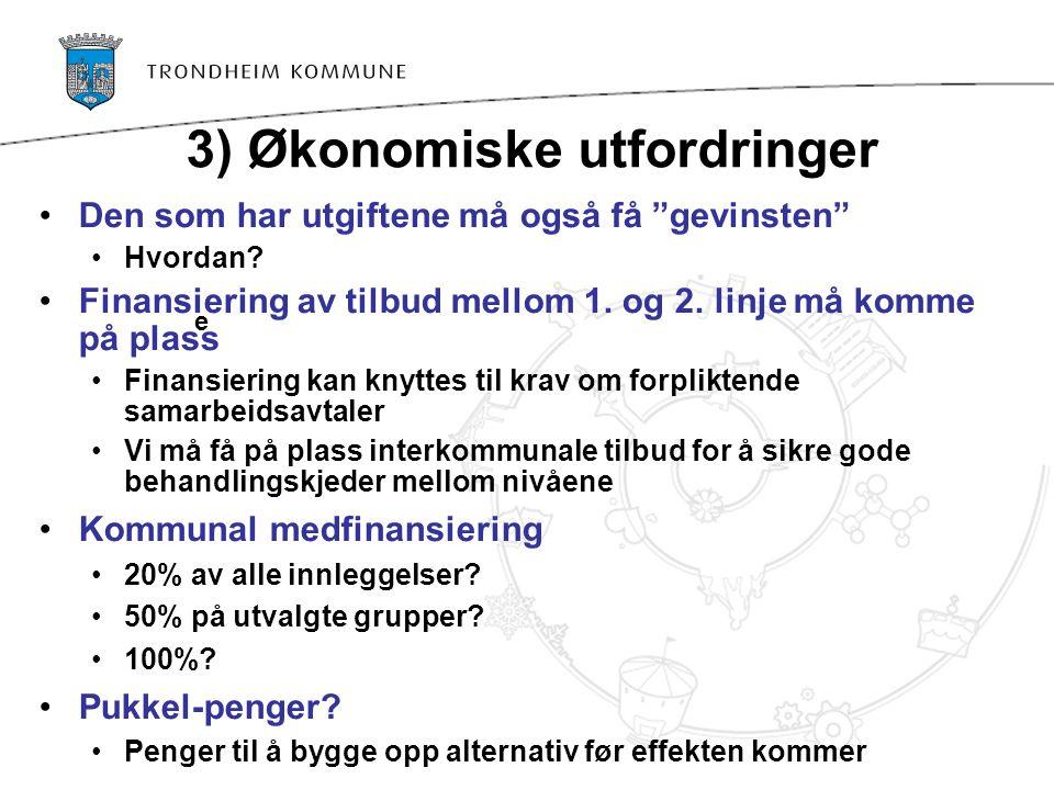 3) Økonomiske utfordringer