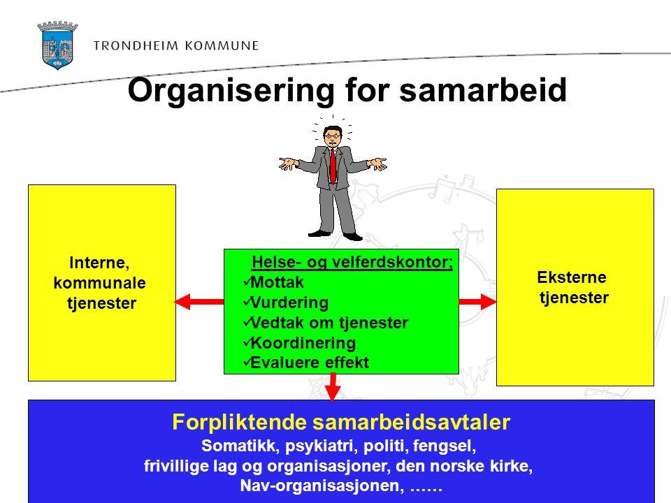 Organisering for samarbeid