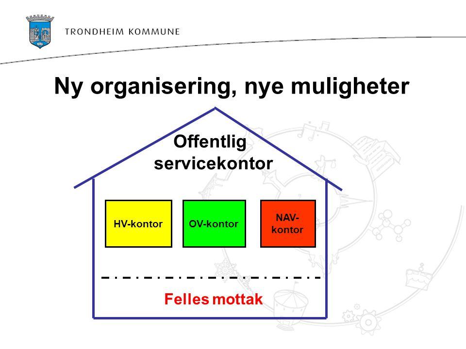 Ny organisering, nye muligheter