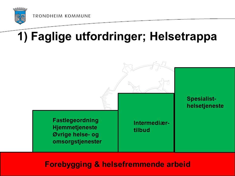 1) Faglige utfordringer; Helsetrappa