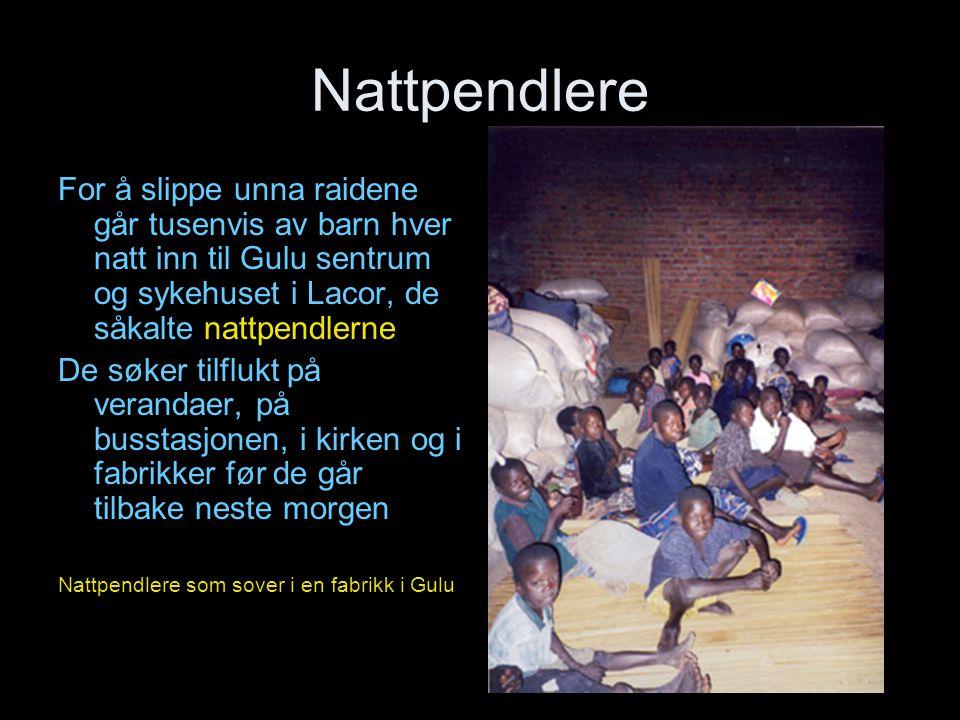 Nattpendlere For å slippe unna raidene går tusenvis av barn hver natt inn til Gulu sentrum og sykehuset i Lacor, de såkalte nattpendlerne.