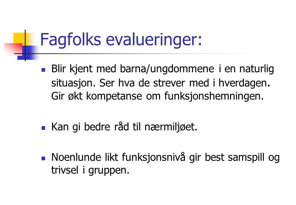 Fagfolks evalueringer: