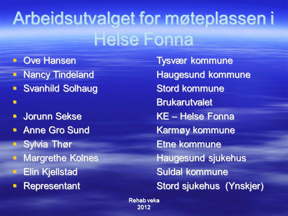 Arbeidsutvalget for møteplassen i Helse Fonna