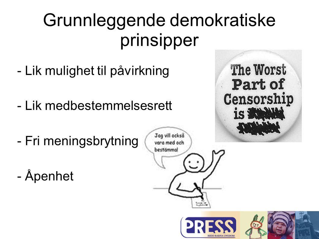 Grunnleggende demokratiske prinsipper