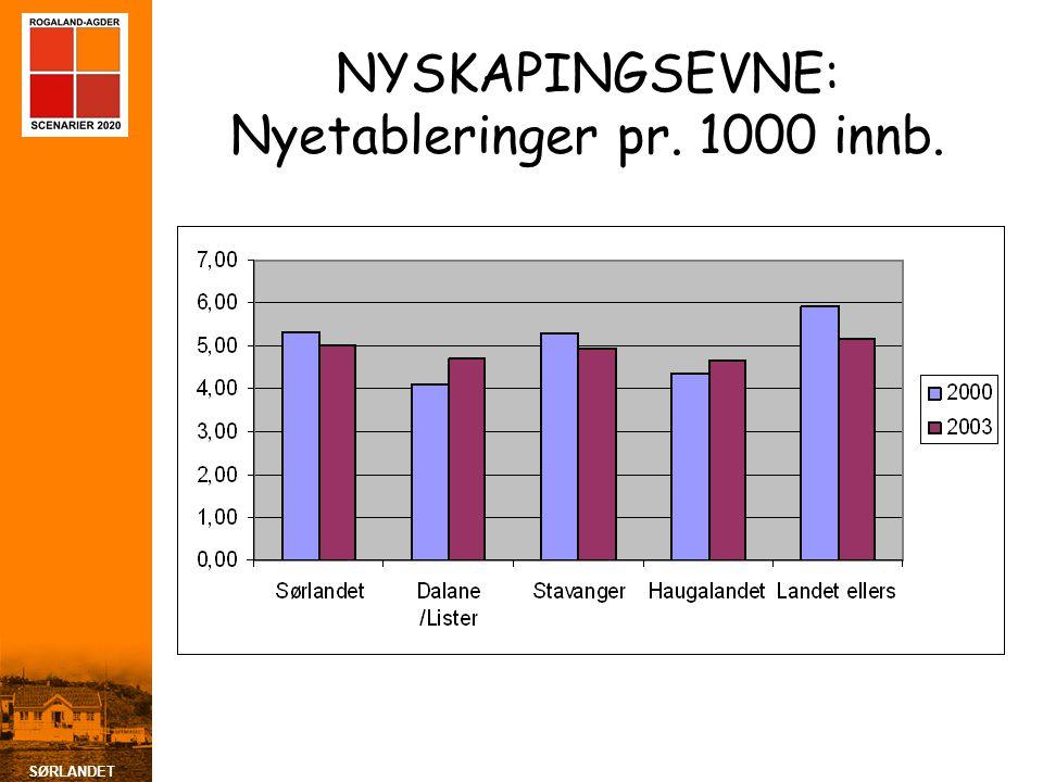 NYSKAPINGSEVNE: Nyetableringer pr. 1000 innb.