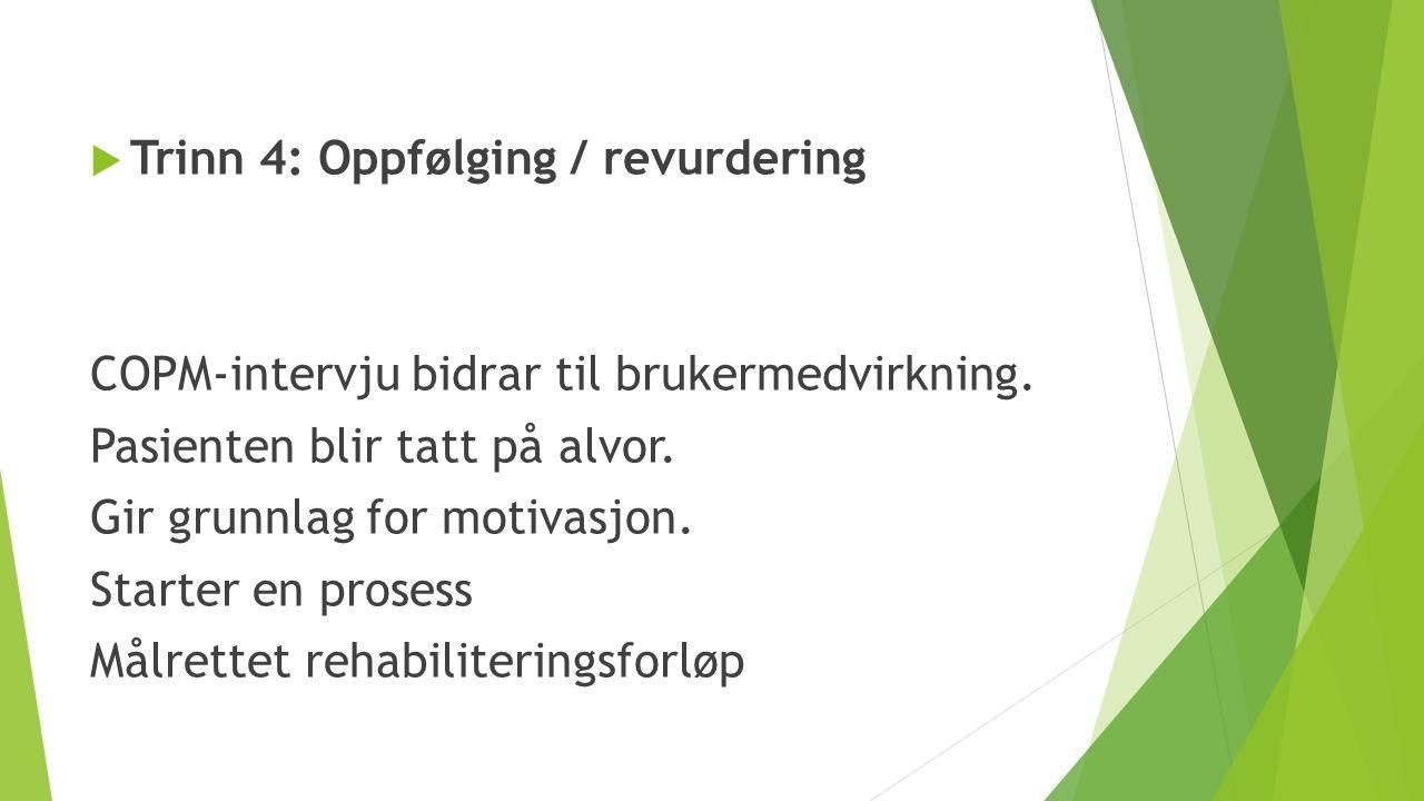 Trinn 4: Oppfølging / revurdering