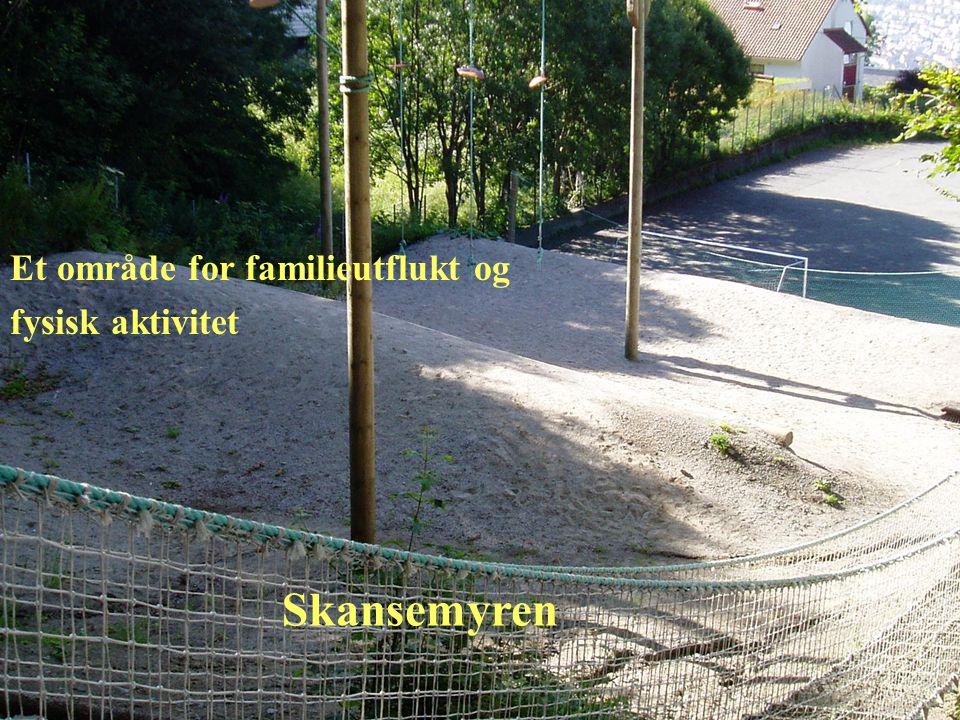 Skansemyren Et område for familieutflukt og fysisk aktivitet
