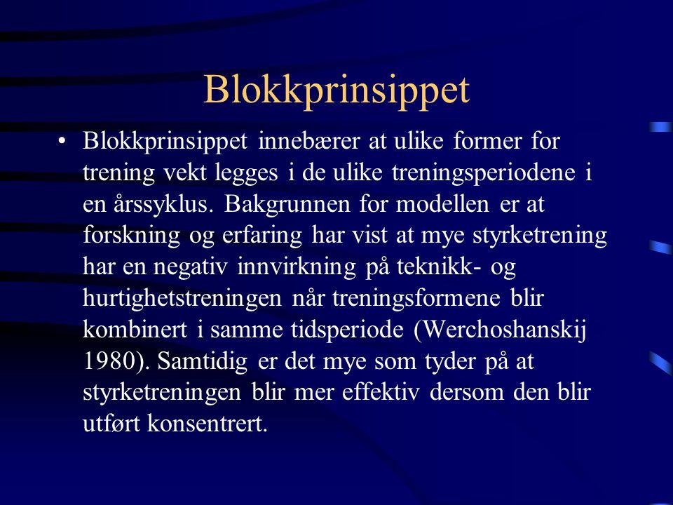 Blokkprinsippet