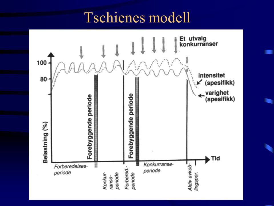 Tschienes modell
