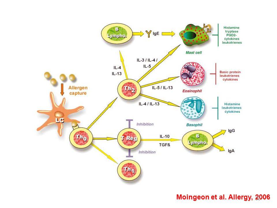 Moingeon et al. Allergy, 2006 33